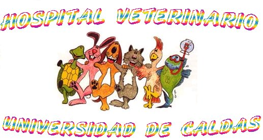 Hospital Veterinario - Universidad de Caldas